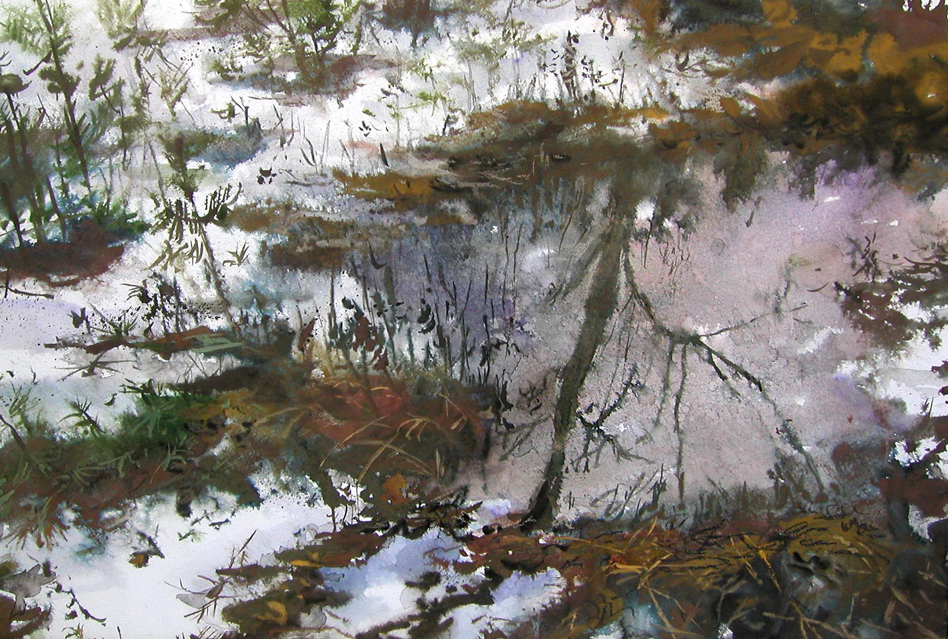 Отражение. 2006.